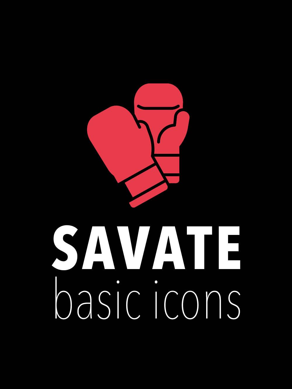 savate-bf-basic-icons-couv
